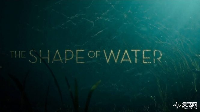 14139-the-shape-of-water-trailer
