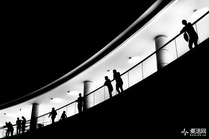 Alan-Schaller-Metropolis-14