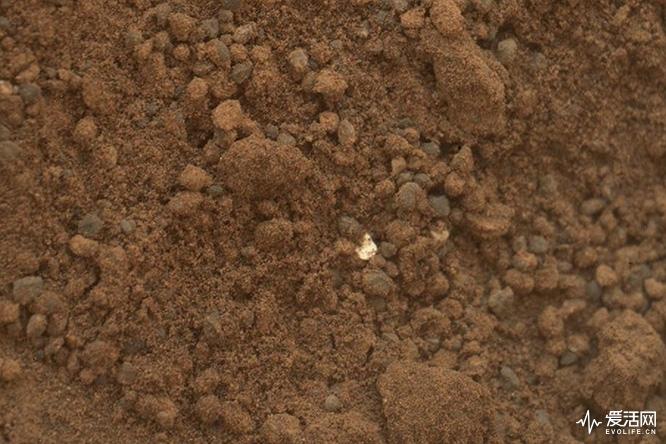 Martian_soil