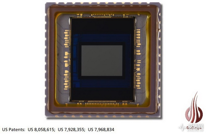 Black Silicon-4