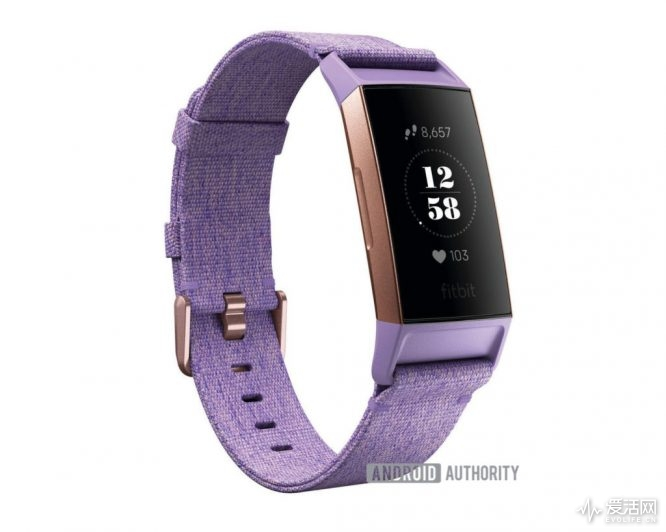 Fitbit-charge-3-leak-2