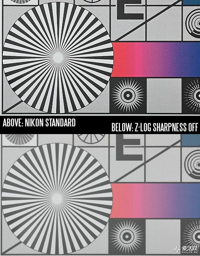 z-log-sharpness-off-vs-standard