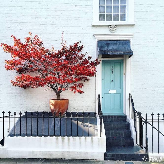 london-front-door-colors-bella-foxwell-24