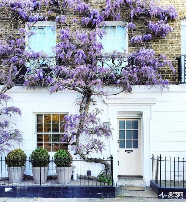 london-front-door-colors-bella-foxwell-35