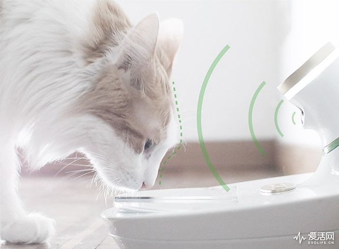 mookkie-smart-pet-bowl-designboom-818