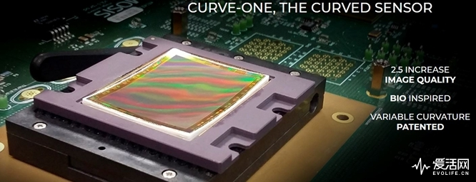 Curve-One-curved-sensors1